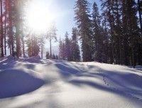 winterurlaub.jpg