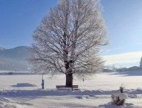 winterurlaub-2.jpg