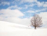 winterurlaub-saalfelden-3.jpg